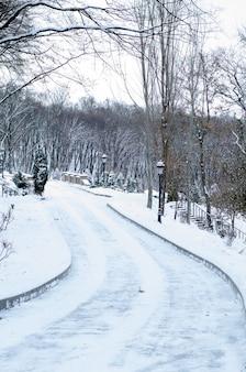 Winter weg. sneeuw behandelde bomen in het bos.