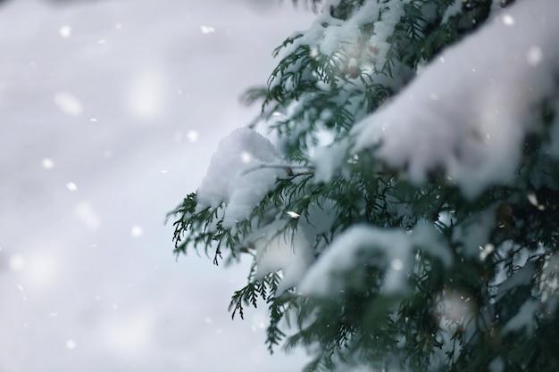 Winter wonderland abstracte achtergrond