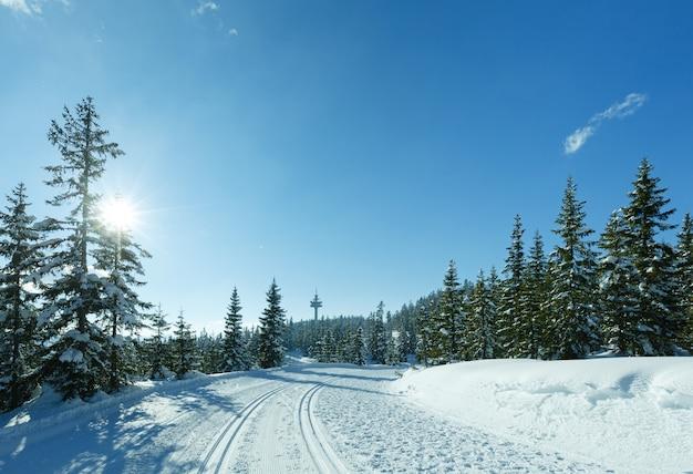 Winter zonnig berglandschap met skipiste (top papageno bahn - filzmoos, oostenrijk)