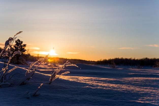 Winter zonsondergang in nuorgam, lapland, finland