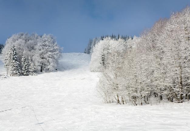 Winterberglandschap met rijp en besneeuwde sparrenbomen en skipiste