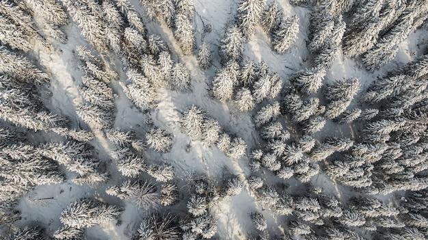 Winterbos met besneeuwde bomen, luchtfoto. winter natuur, luchtfoto landschap met bevroren rivier, bomen bedekt witte sneeuw