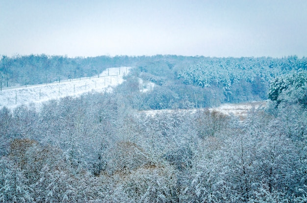 Winterlandschap, bomen in de sneeuw