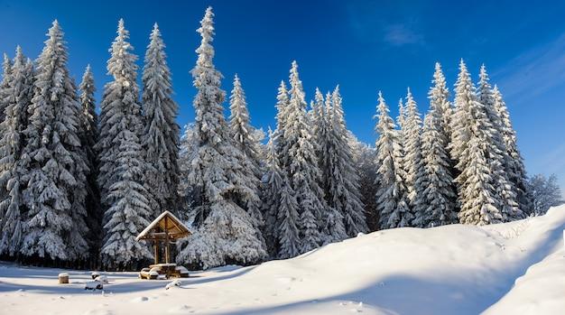 Winterlandschap in bergen