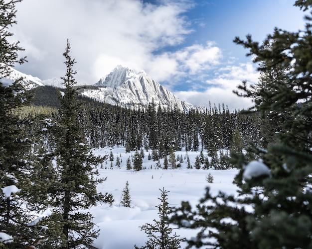 Winterlandschap met besneeuwde bergen