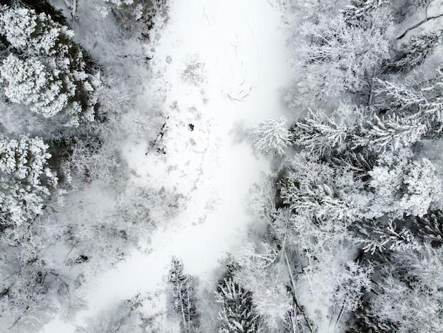 Winterlandschap met bevroren bos rivier bedekt witte sneeuw en naaldbomen besneeuwde bomen luchtfoto