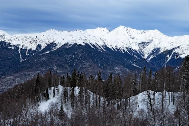 Winterlandschap met blauwe hemel