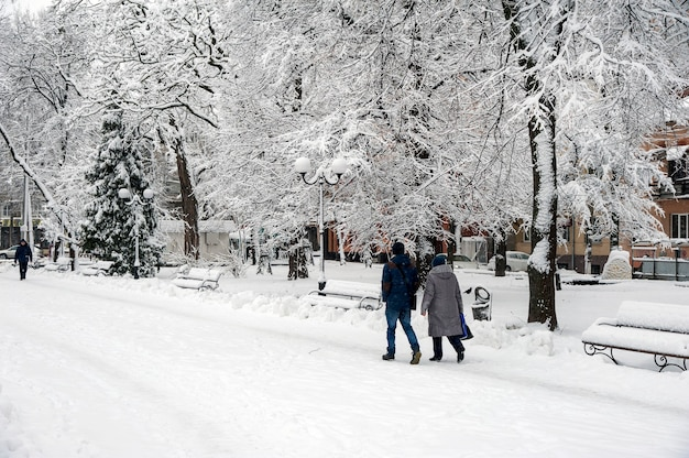 Winterlandschap met bomen en sneeuw in stadspark. bomen zijn cov