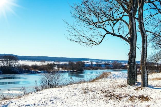 Winterlandschap met een boom aan de rivier de oever bij zonnig weer