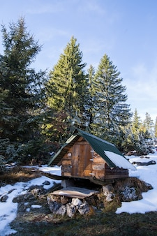 Winterlandschap met een hut