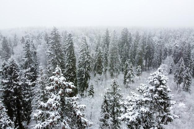 Winterlandschap met naaldbos bedekt witte sneeuw en besneeuwde top groenblijvende bomen luchtfoto