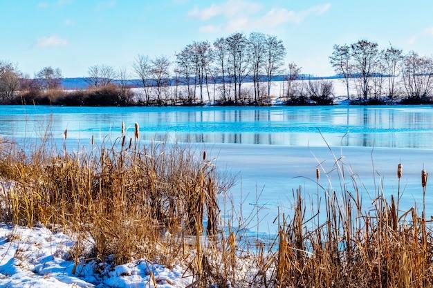 Winterlandschap met rivier en rietstruiken bij zonnig weer