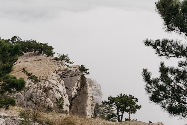 Winterlandschap met rotsen en bomen