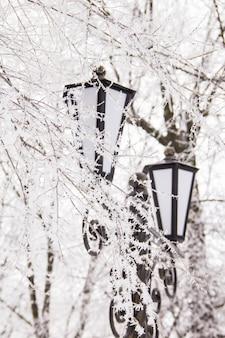 Winterlandschap met straatlantaarn in de sneeuw