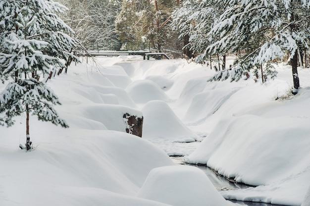Winterlandschap rivier in de sneeuw, rond het bos.