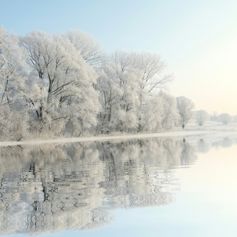 Winterlandschap van berijpte bomen tegen de blauwe hemel