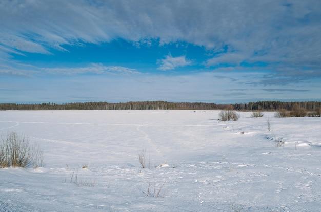 Winterlandschap van een met sneeuw bedekte meer met een bos