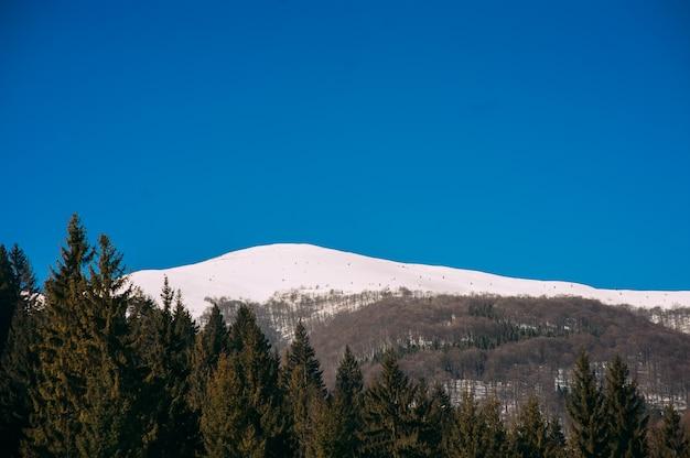 Winterlandschap van karpaten