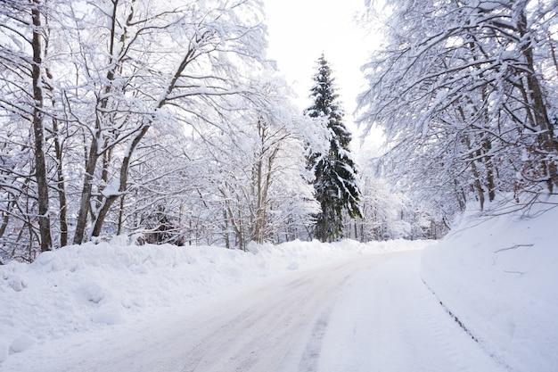Winterlandschap, weg bedekt met sneeuw. italiaanse alpen