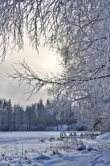 Wintermeer en bos met brug in de sneeuw.