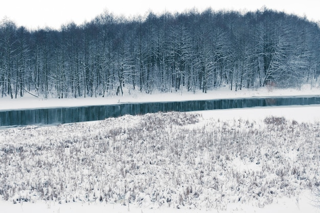 Wintermoeras met riviertje en donker bos achteruit
