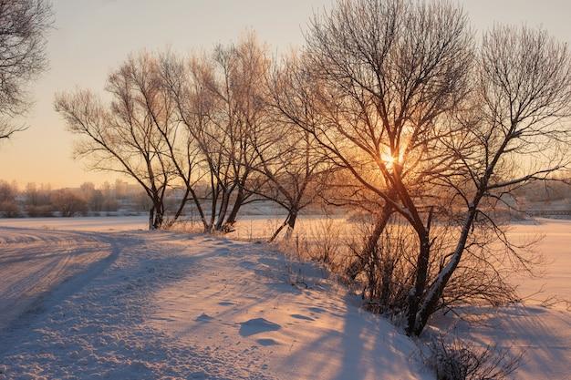 Winterochtend met sneeuw en vorst