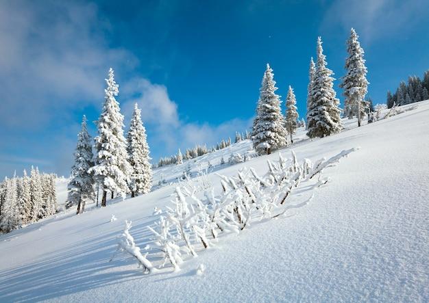 Winterrijp en besneeuwde dennenbomen op de berghelling op blauwe hemelachtergrond