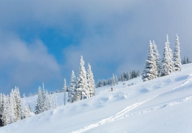 Winterrijp en met sneeuw bedekte sparren op berghelling op bewolkte hemelachtergrond