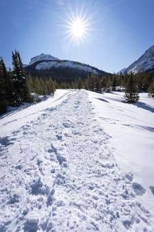 Winterwandelen in canadese rockies, portret gemaakt bij burstall lakes, kananaskis, alberta, canada