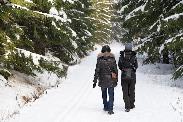 Winterwandeling door het besneeuwde bos