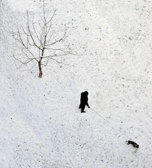 Winterwandelingen van een man met een hond op bevroren sneeuw bedekt gazon in de winter