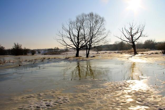 Winterweide met bevroren water en bomen. landelijk landschap