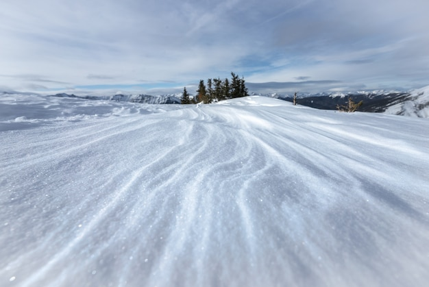 Winterwonderlandscène met sneeuwpatronen, bij prairie mountain, kananaskis, alberta, canada