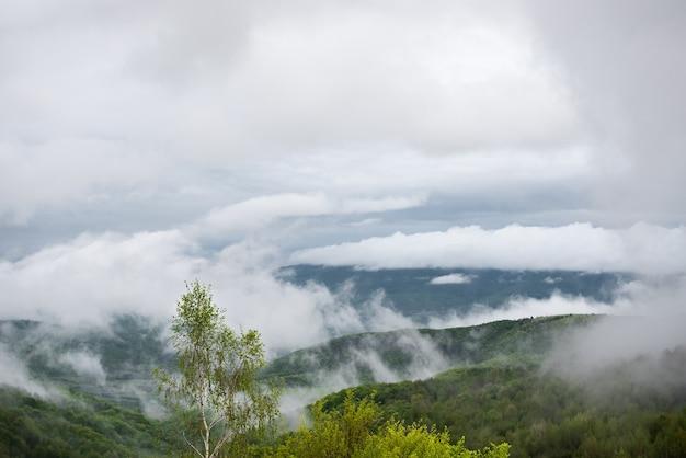 Wisselvallig lenteweer met mist in de bergen na regen