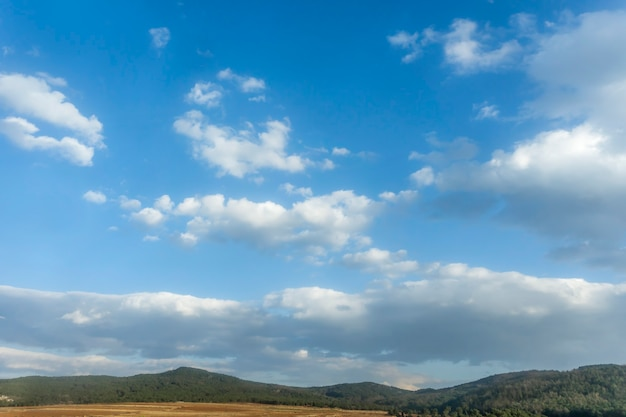 Wit bewolkt met blauwe hemelachtergrond.