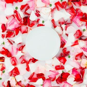Wit cirkelkader over kleurrijke bloemblaadjes