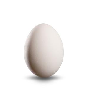 Wit ei dat op witte achtergrond wordt geïsoleerd