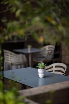 Wit en groen gestreepte keramische mok op tafel