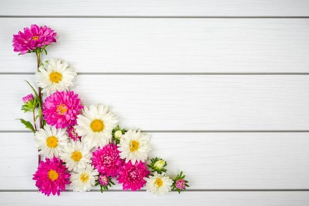 Wit en paars roze daisie op witte houten achtergrond