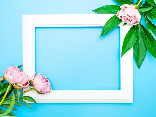 Wit frame en roze pioenrozen op een blauwe achtergrond