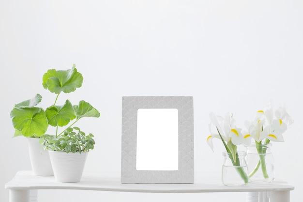 Wit frame, groene planten en lentebloemen op plank op witte achtergrond