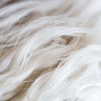 Wit het bont van de achtergrond hondenwol textuurbehang.