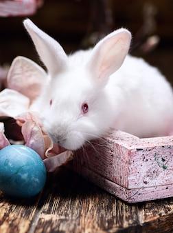 Wit konijn op de houten lijst aan de vooravond van pasen