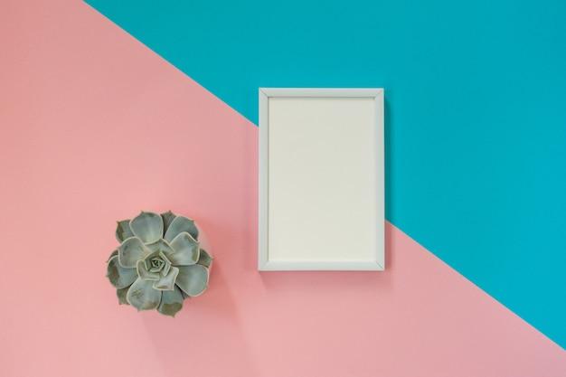 Wit leeg kader op blauw en roze voor mockup en succulente pot. plat leggen
