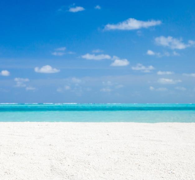 Wit tropisch strand op de malediven met weinig palmbomen en blauwe lagune