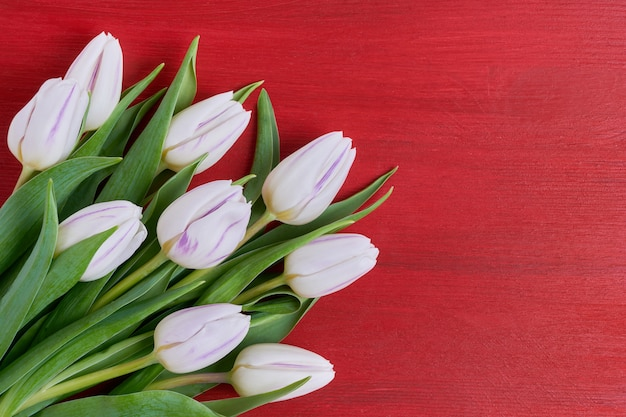 Wit tulpenboeket op rode houten achtergrond.