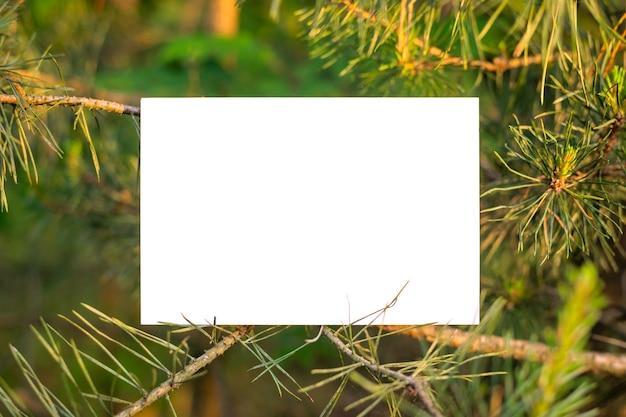 Witboek met kopie ruimte op de kleine dennenboom
