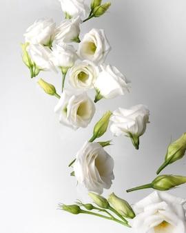 Witte bloemen beweging.