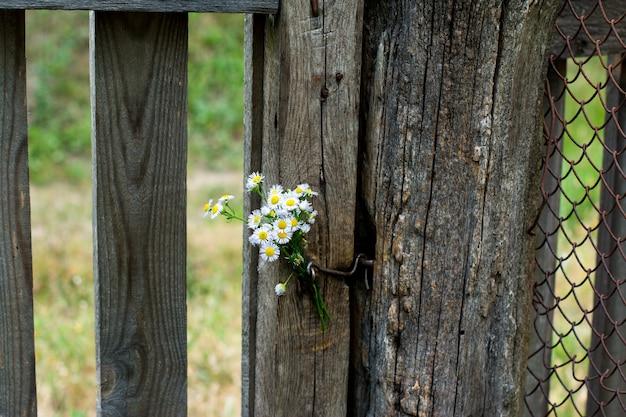 Witte bloemen en een oud hek. romantisch beeld