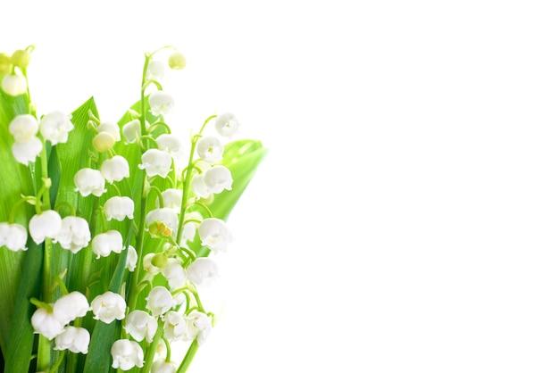 Witte bloemen lelietje-van-dalen geïsoleerd op een witte achtergrond